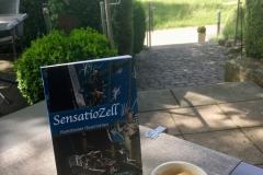 Buch Sensatiozell, Radolfzell ambodensee