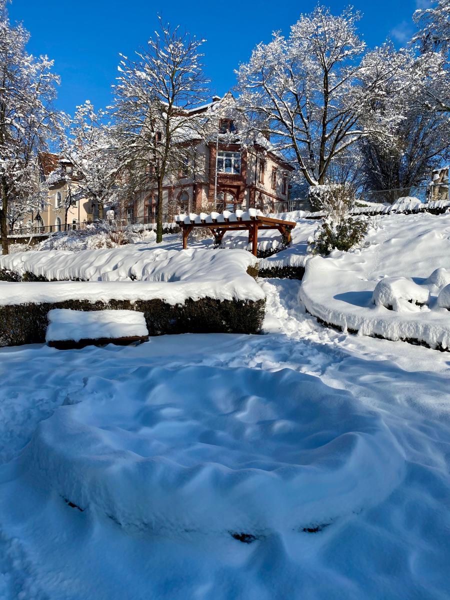 Bignion-Radolfzell-Stadtgarten
