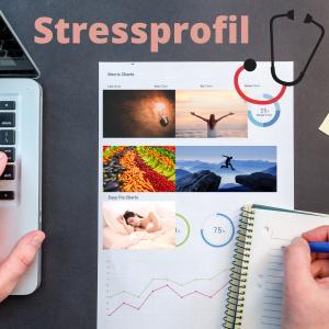 Coaching mit persönlichem Stressprofil